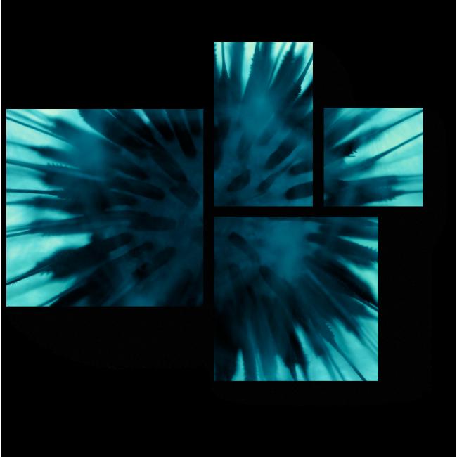 Модульная картина Сердце цветка