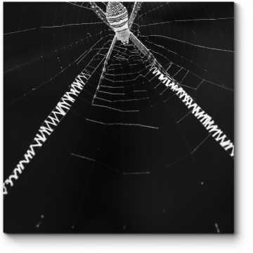 Модульная картина В сетях паука