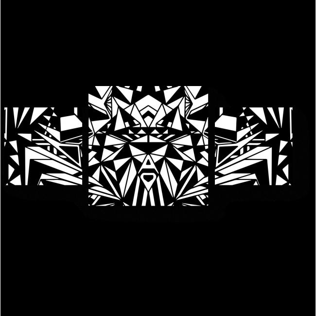 Модульная картина Абсолютная симметрия