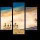 Песчаный пляж с высоты птичьего