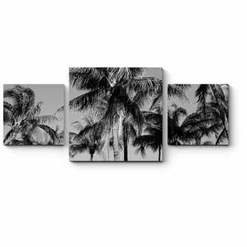 Модульная картина Жаркие тропики