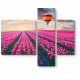 Пролетая над тюльпановым полем