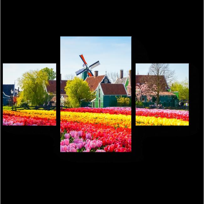 Модульная картина Тюльпановое поле, Амстердам