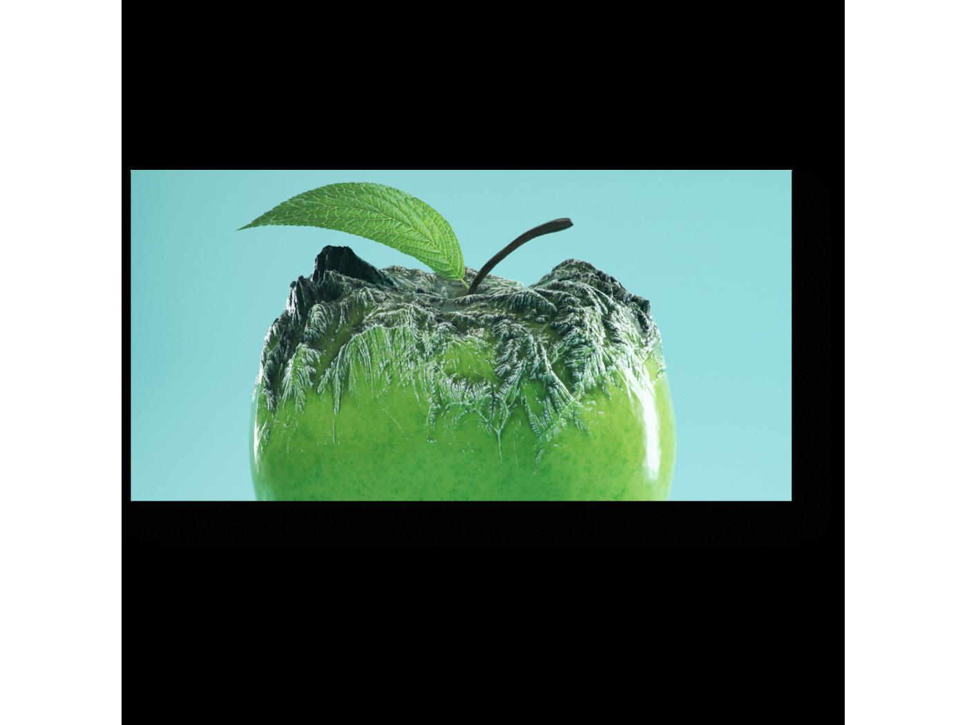 Модульная картина Заледеневшее яблоко (40x20) фото