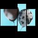 Меховые надувные шарики
