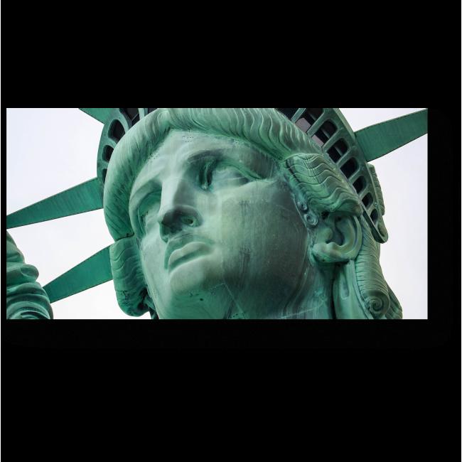 Модульная картина Лицо Свободы