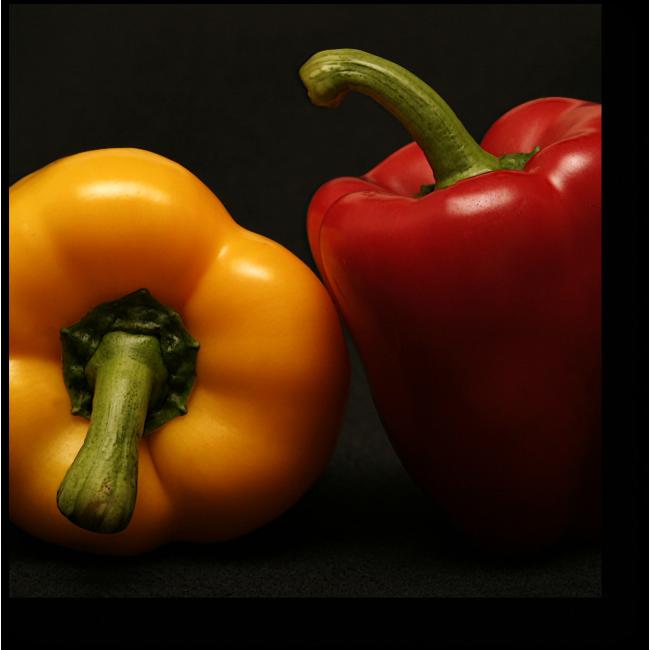 Модульная картина Овощная гармония