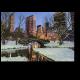 Зимний вид Центрального Парка