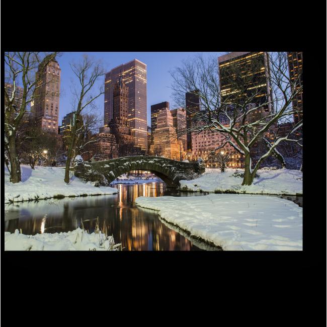 Модульная картина Зимний вид Центрального Парка