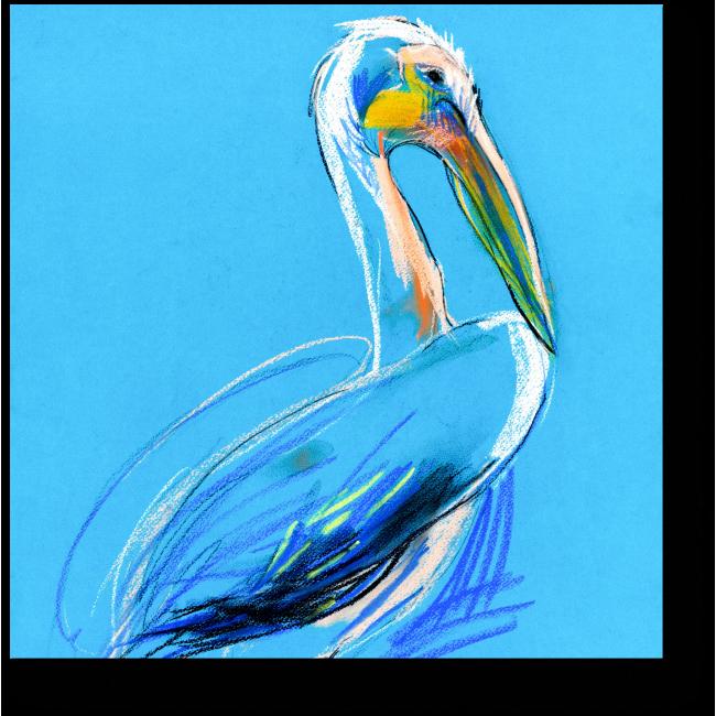 Модульная картина Пеликан