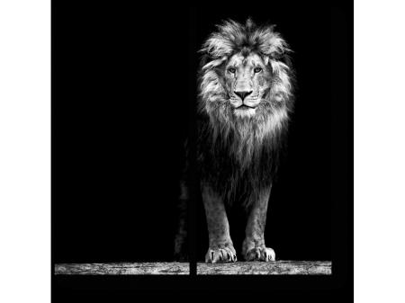 картина со львом