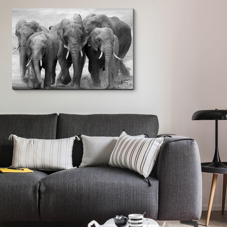 картина со слонами